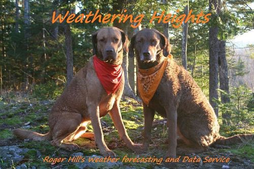 Weathering Heights - DeerSeason1